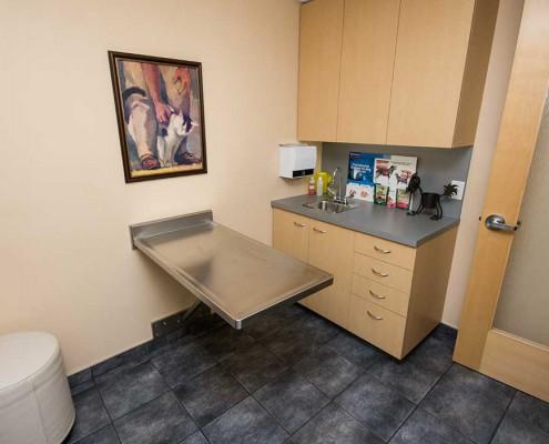 West Coast Veterinary Dental Services exam room